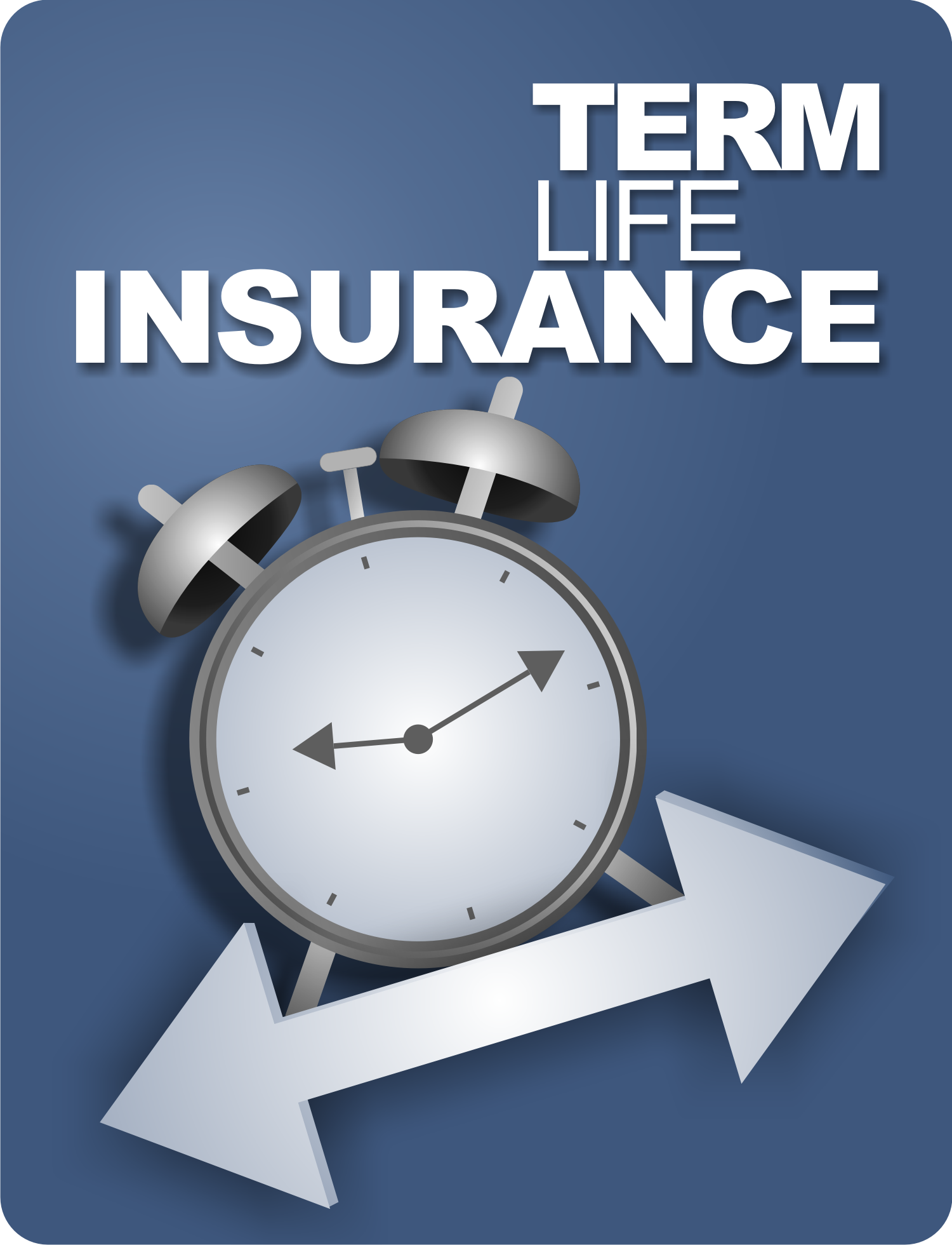 Term Life Ins Quote Alluring Cheapest Term Life Insurance Quotes We Give Advice So You Can Decide